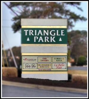 trianglepark-blur-sm
